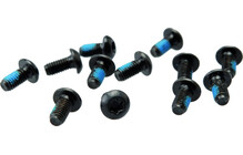 Hayes screws Torx T-26